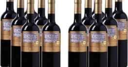 Weinvorteil 12er Paket Calle Principal